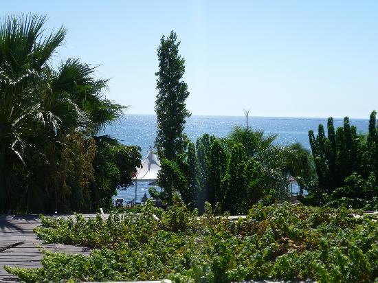 andreas-melani-beach (2)