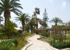 nissi-beach-resort