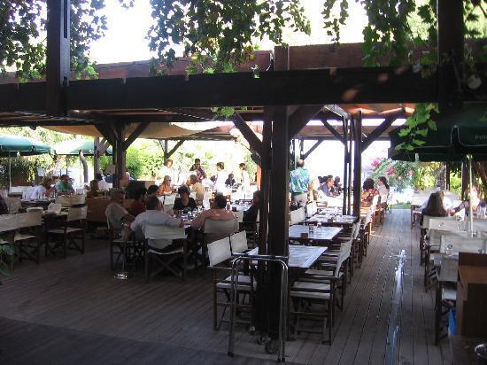 salle-restaurant-exterieure